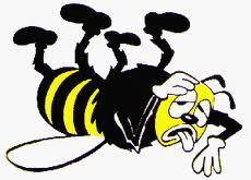 abeille malade