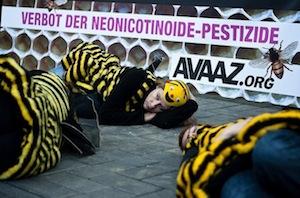 manifestation pro-abeilles