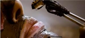 """Une scène du film """" Blanche-Neige """" ( Mirror Mirror ), dans lequel Julia Roberts dans le rôle de la reine se fait piquer par une abeille les lèvres pour en augmenter le volume"""