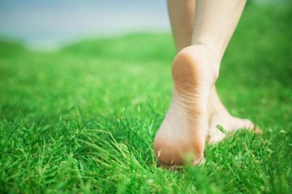 ne pas marcher pieds nus dans les prés